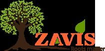 Zavis Fashions